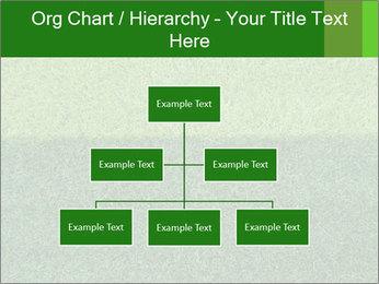Grass field PowerPoint Template - Slide 66
