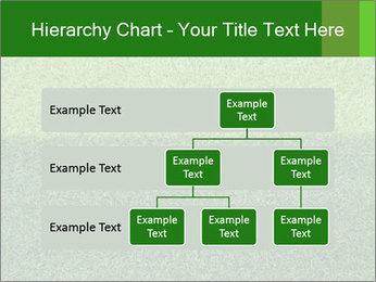 Grass field PowerPoint Template - Slide 67