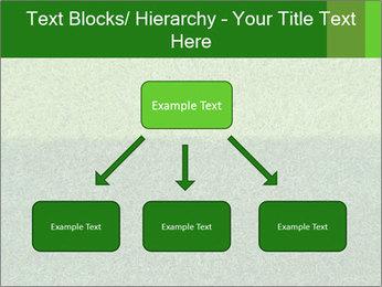 Grass field PowerPoint Template - Slide 69