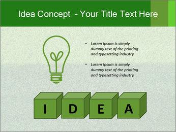 Grass field PowerPoint Template - Slide 80