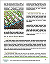 0000089858 Word Template - Page 4