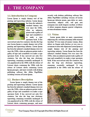 0000089864 Word Template - Page 3