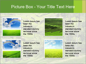Chinese Tea Plantation PowerPoint Template - Slide 14