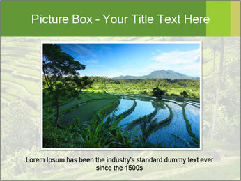 Chinese Tea Plantation PowerPoint Template - Slide 15
