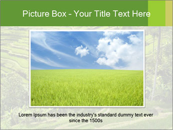 Chinese Tea Plantation PowerPoint Template - Slide 16