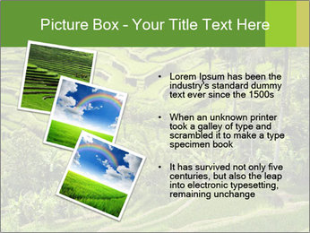 Chinese Tea Plantation PowerPoint Template - Slide 17