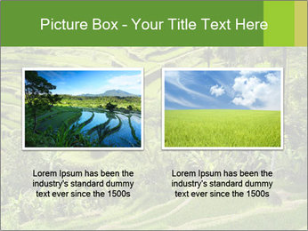 Chinese Tea Plantation PowerPoint Template - Slide 18
