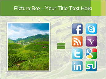 Chinese Tea Plantation PowerPoint Template - Slide 21