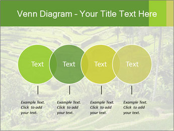 Chinese Tea Plantation PowerPoint Template - Slide 32