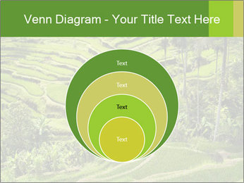 Chinese Tea Plantation PowerPoint Template - Slide 34