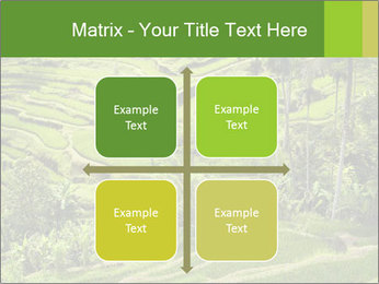 Chinese Tea Plantation PowerPoint Template - Slide 37