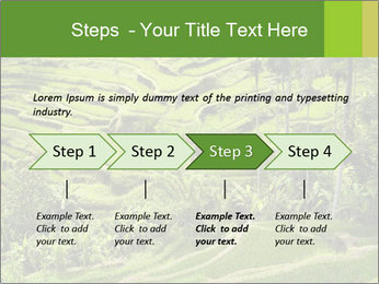Chinese Tea Plantation PowerPoint Template - Slide 4