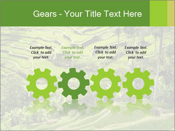 Chinese Tea Plantation PowerPoint Template - Slide 48