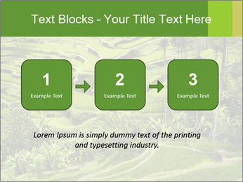 Chinese Tea Plantation PowerPoint Template - Slide 71