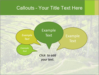 Chinese Tea Plantation PowerPoint Template - Slide 73