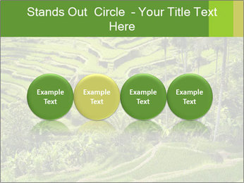 Chinese Tea Plantation PowerPoint Template - Slide 76