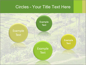 Chinese Tea Plantation PowerPoint Template - Slide 77