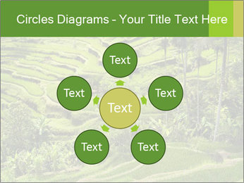 Chinese Tea Plantation PowerPoint Template - Slide 78