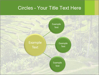 Chinese Tea Plantation PowerPoint Template - Slide 79