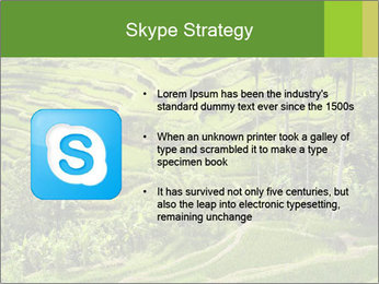 Chinese Tea Plantation PowerPoint Template - Slide 8