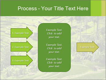 Chinese Tea Plantation PowerPoint Template - Slide 85