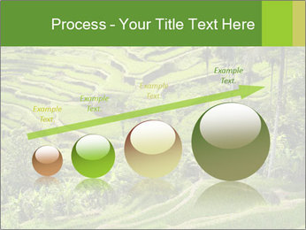 Chinese Tea Plantation PowerPoint Template - Slide 87