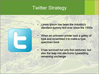 Chinese Tea Plantation PowerPoint Template - Slide 9