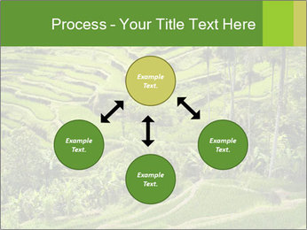 Chinese Tea Plantation PowerPoint Template - Slide 91