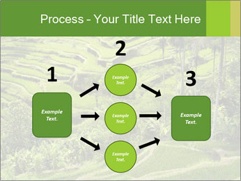 Chinese Tea Plantation PowerPoint Template - Slide 92