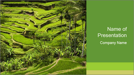 Chinese Tea Plantation PowerPoint Template