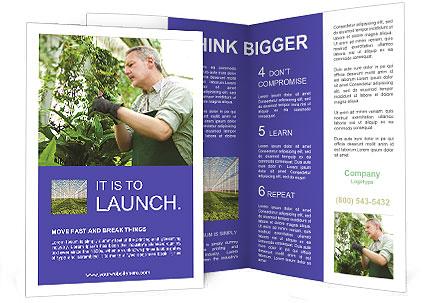 0000089871 Brochure Template