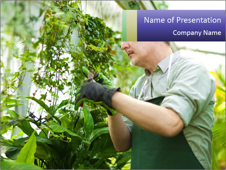 Man Working In Green House PowerPoint Template