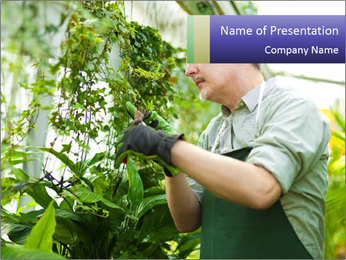 Man Working In Green House PowerPoint Template - Slide 1