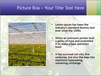 Man Working In Green House PowerPoint Template - Slide 13