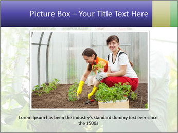 Man Working In Green House PowerPoint Template - Slide 15