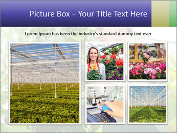 Man Working In Green House PowerPoint Template - Slide 19