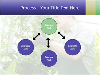 Man Working In Green House PowerPoint Template - Slide 91