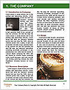 0000089877 Word Template - Page 3