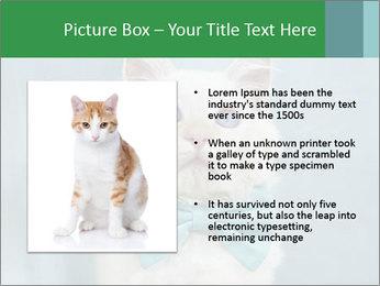 Beautiful white cat PowerPoint Template - Slide 13
