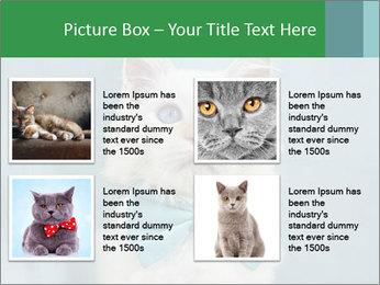Beautiful white cat PowerPoint Template - Slide 14