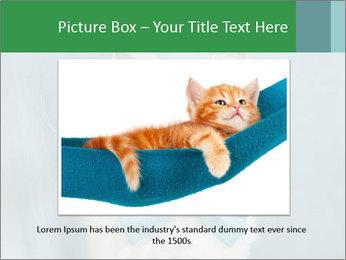 Beautiful white cat PowerPoint Template - Slide 16