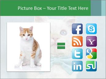 Beautiful white cat PowerPoint Template - Slide 21