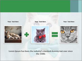 Beautiful white cat PowerPoint Template - Slide 22