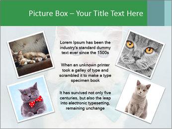 Beautiful white cat PowerPoint Template - Slide 24