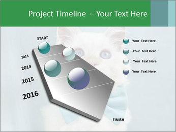 Beautiful white cat PowerPoint Template - Slide 26