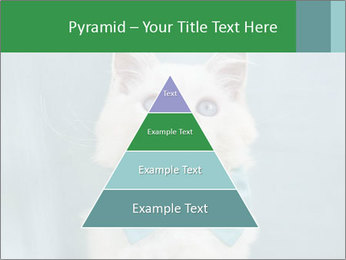 Beautiful white cat PowerPoint Template - Slide 30