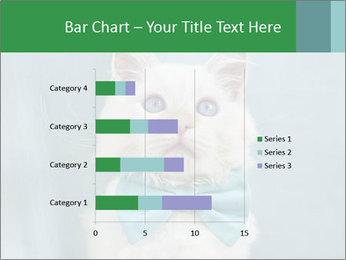 Beautiful white cat PowerPoint Template - Slide 52