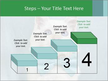 Beautiful white cat PowerPoint Template - Slide 64