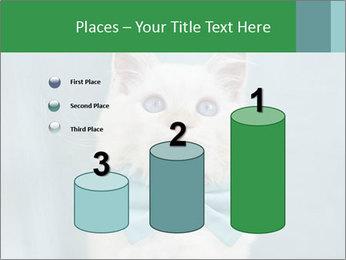 Beautiful white cat PowerPoint Template - Slide 65