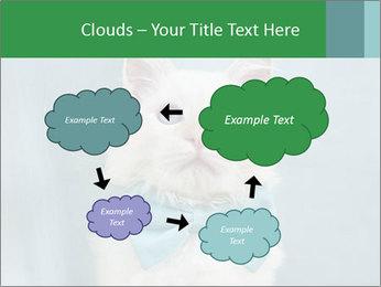 Beautiful white cat PowerPoint Template - Slide 72